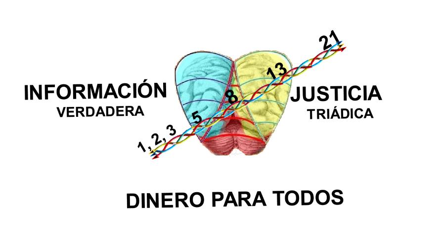 Presentación de la Plataforma 1: Información, Dinero y Justicia para todos